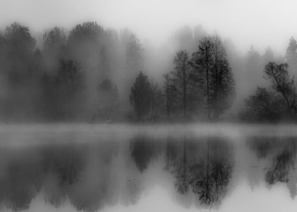 svart och vita bilder